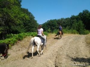 Horse riding gift voucher