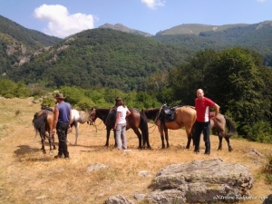 Ваучер- Свободна конна езда